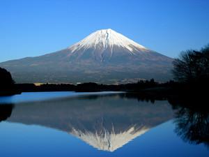 Fuji167